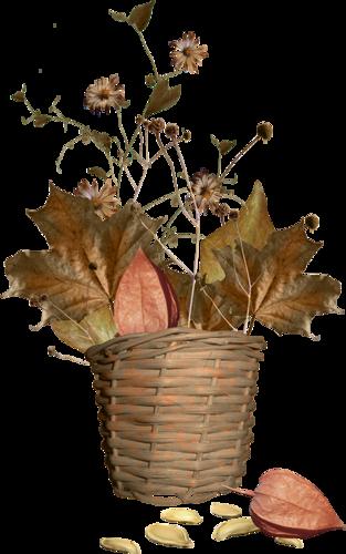 tube automne trouvé sur le net