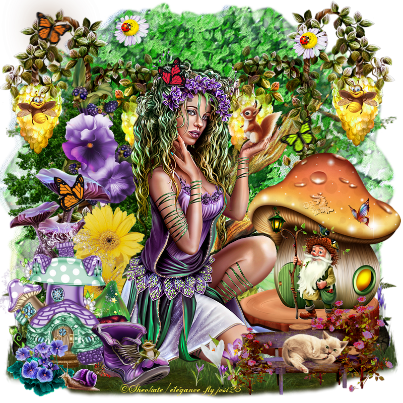 Fairy of forest
