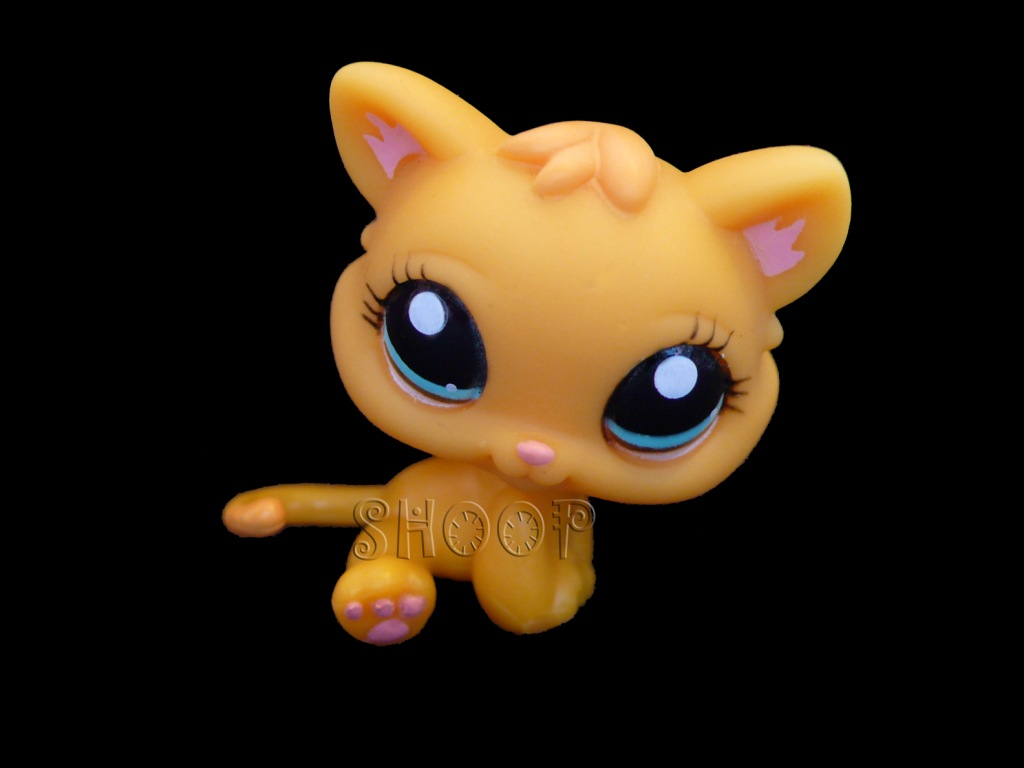 LPS 1053
