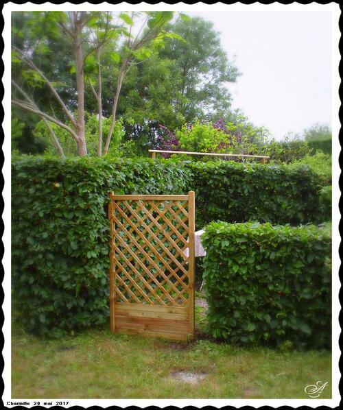 Mon jardin 2017