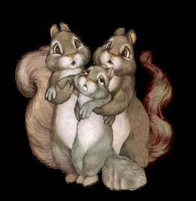Tubes ecureuils en png