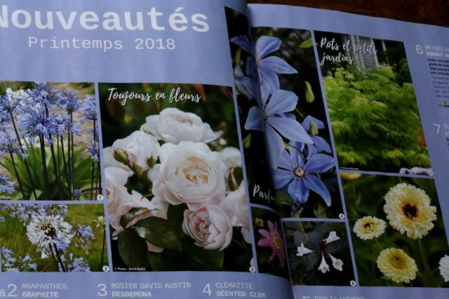 Catalogue ou magazine ?
