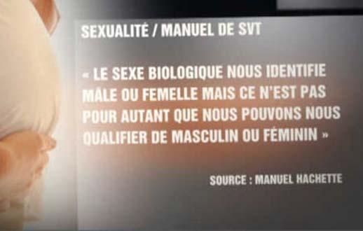 Théorie du genre à l'école : des parents d'élèves inquiets en Bretagne