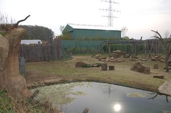 Zoo Osnabruck d50 2012 043
