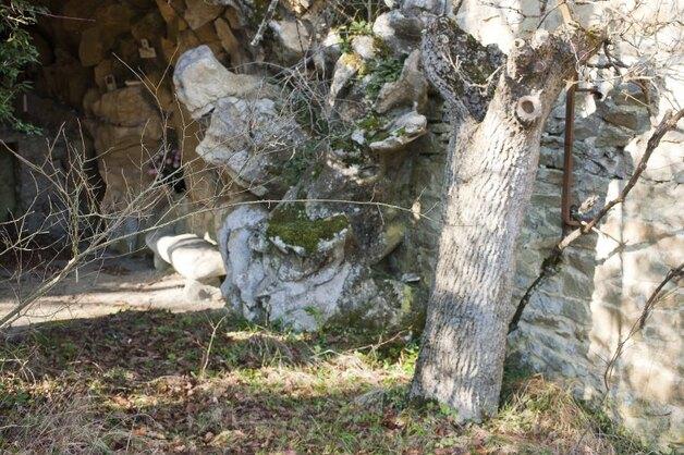 Troncs, en bois de jardin ou seuls.