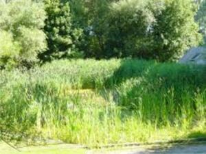 Wolu1200 : Le parc Saint-Lambert... de plus en plus à l'abandon
