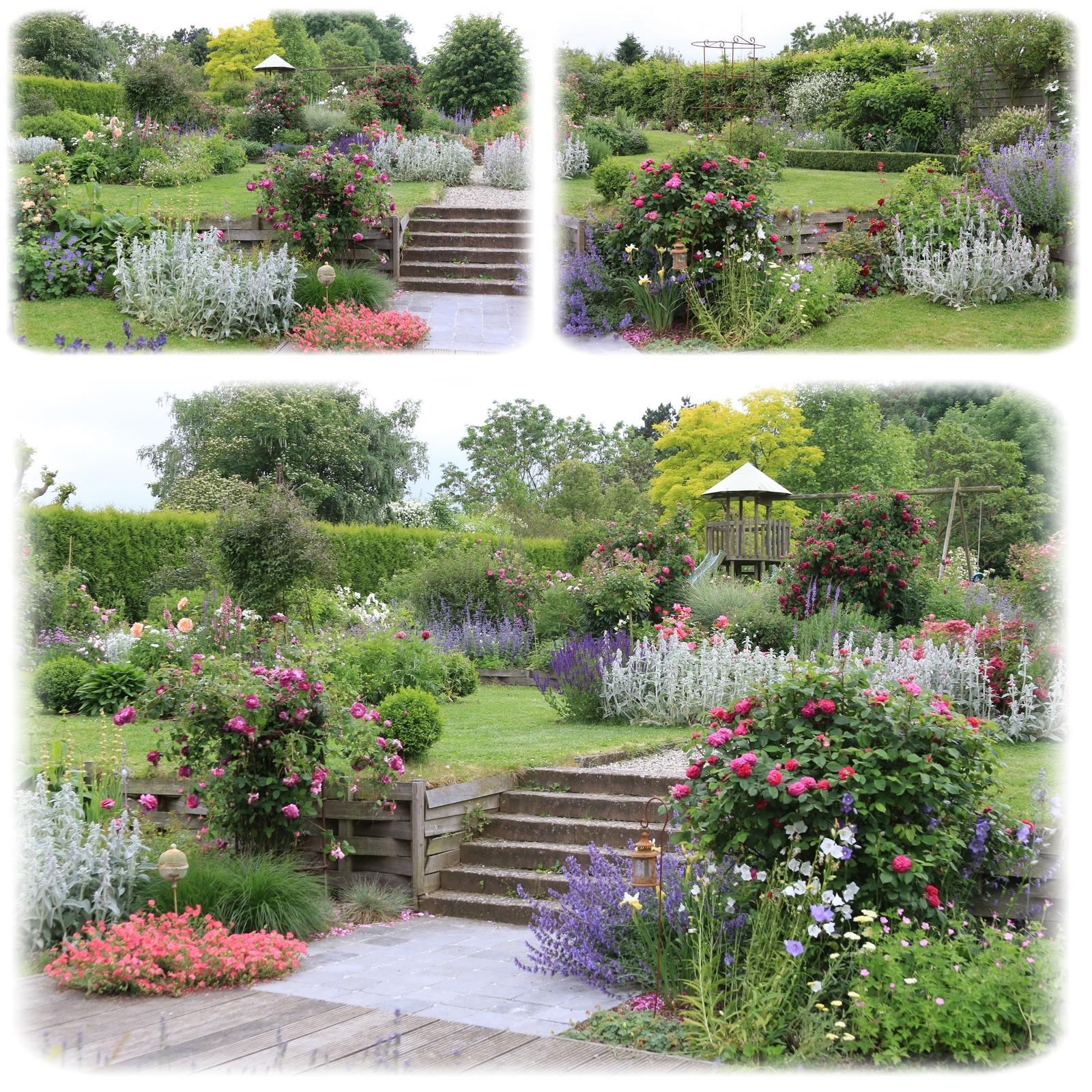 Mon jardin vu par Valou