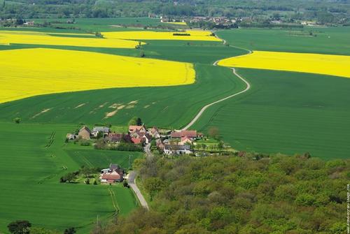 L'agriculture en France : bocages et openfields
