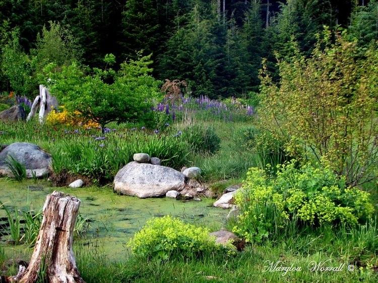 Nouvelles du Canada 140 : Un jardin merveilleux