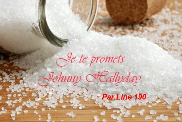 Je Te Promets    Johnny Hallyday     Par Line 190