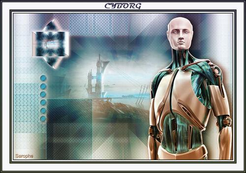 *** Cyborg ***