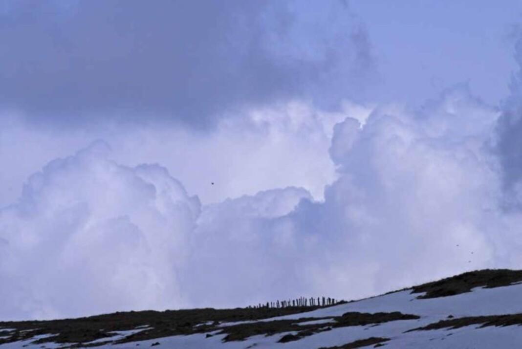 Givre-neige-6-3066.jpg