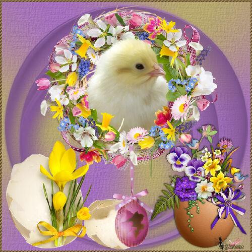 Défis Fleurs I