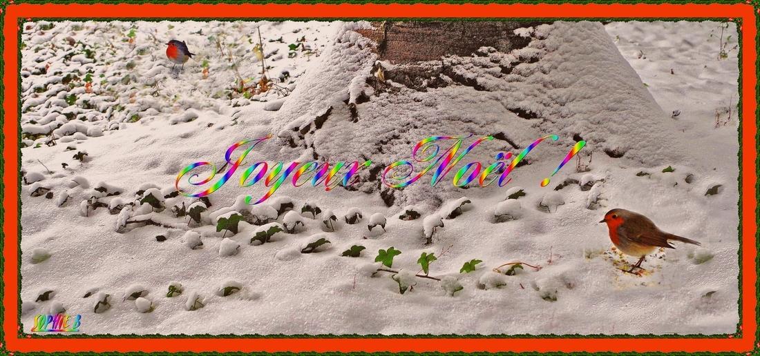 Un petit peu de neige ?