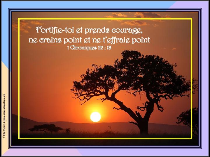 Fortifie-toi et prend courage - 1 Chronique 22 : 13