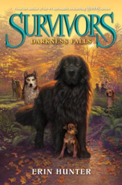 #3 : Darkness Falls