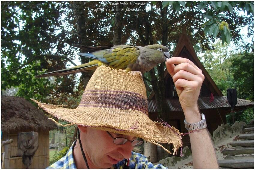 Tropical Parc St Jacut les Pins - 56 -