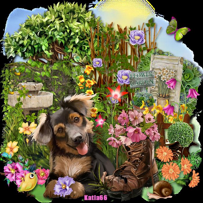 Défi Pets de Juin 2020