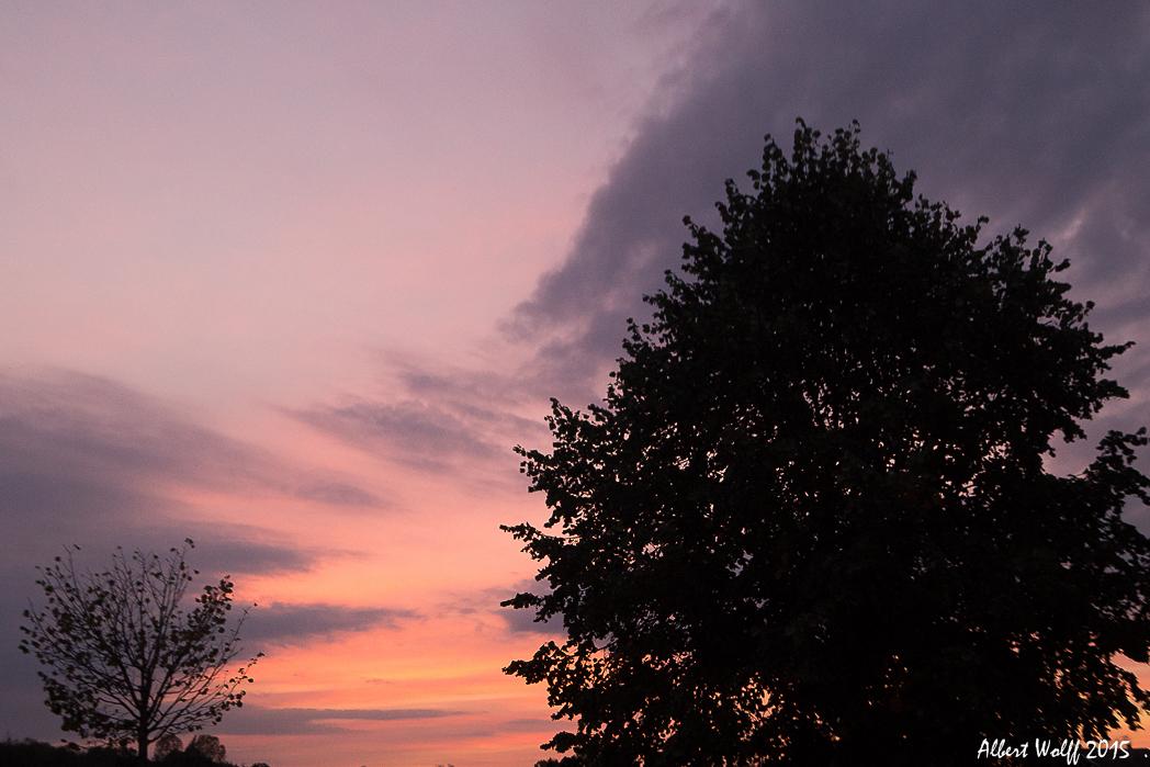 Le coucher du roi (soleil)