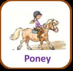 Poneys et chevaux , les outils