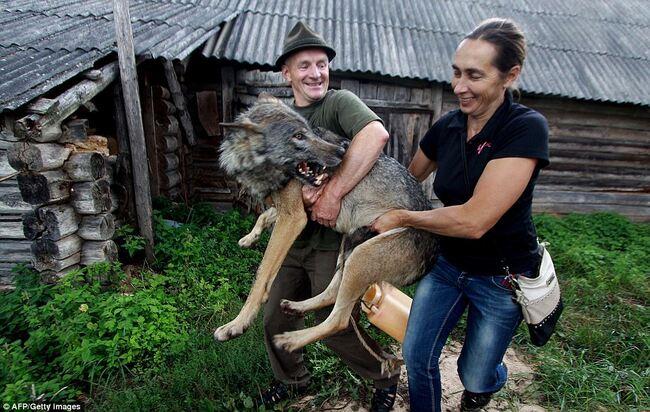 Et voici leur sauveur et gardien – Oleg Selekh et sa femme Yelena