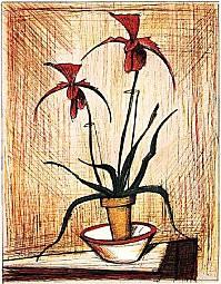 Orchidées,Bernard Buffet