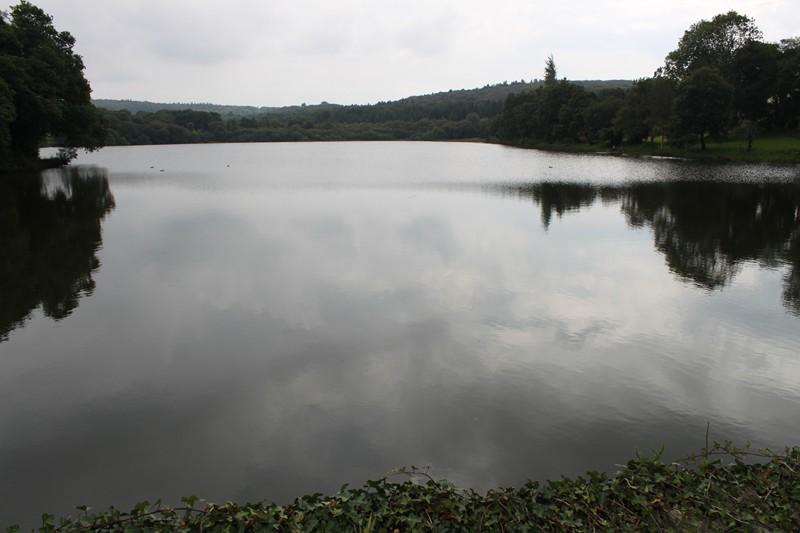 778 - L'étang du Roual et son moulin à Dirinon (29N)