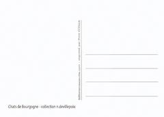 Cartes postales CHATS Tigrés