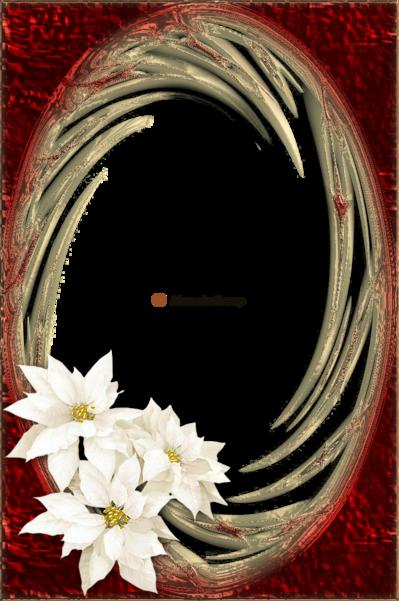 Cadres fleuries 1