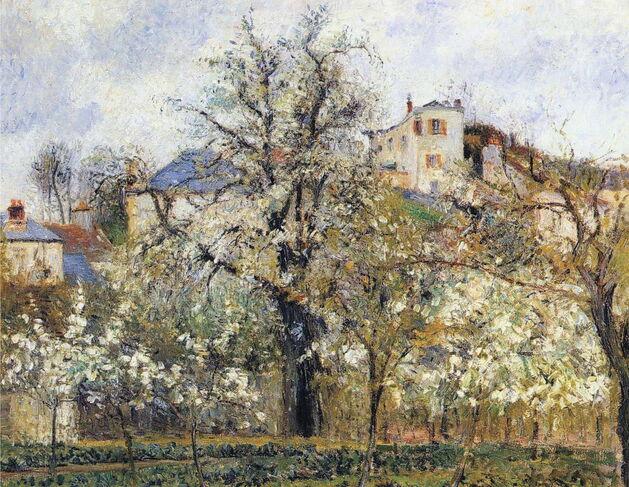 Le tableau du samedi - Printemps- pruniers en fleurs Camille Pissaro