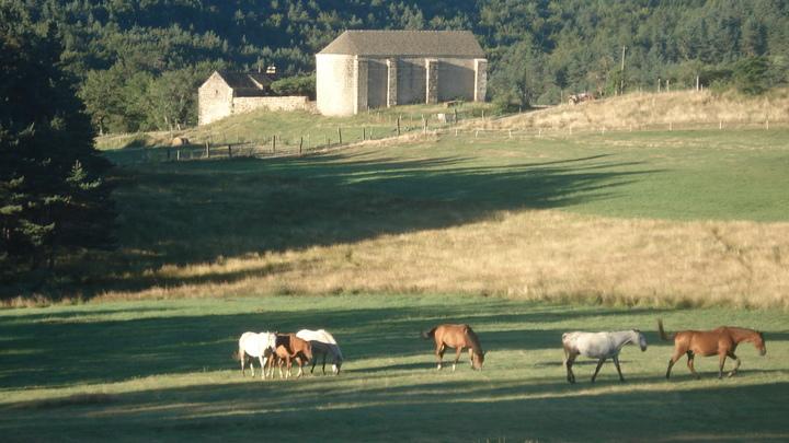En Pyrénées-Orientales.