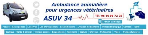 urgences vétérinaire 34