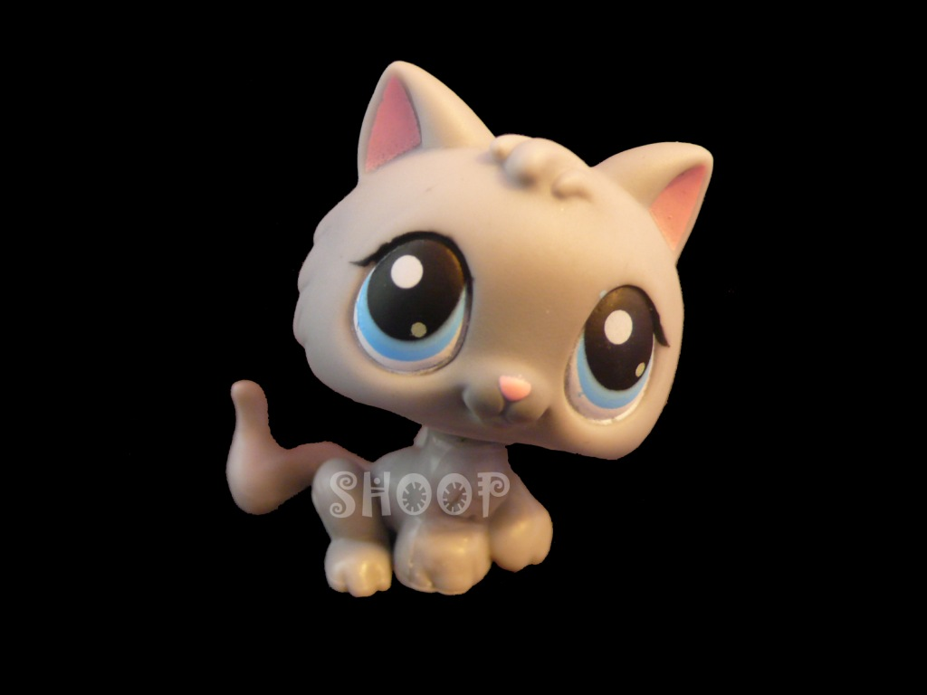 LPS 66