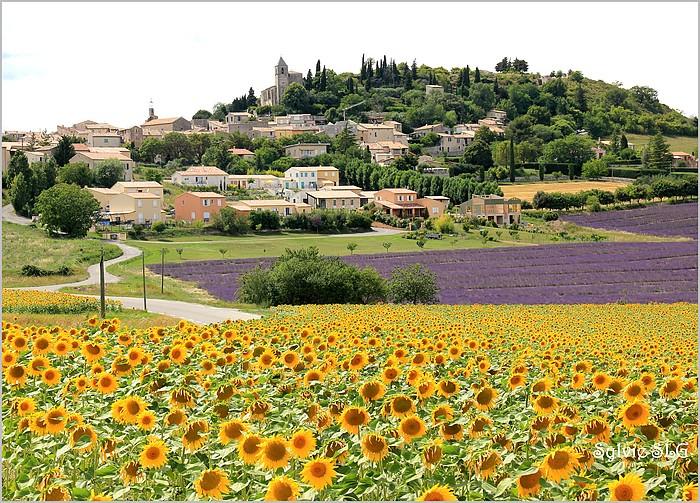Sur les routes des Alpes de Haute Provence