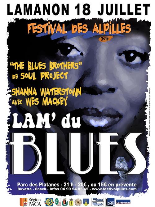 LAM'DU BLUES : 18 juillet 2014 à LAMANON