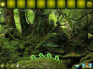 Jouer à Reptiles forest escape