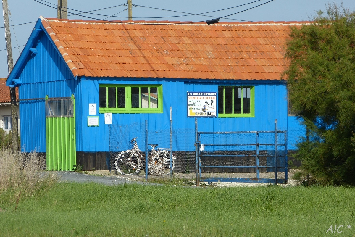 Cabane, vélo et coquilles d'huîtres