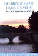 Gilles STRAWCZYNSKI – Du brouillard dans les yeux
