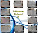 PictureIt 181 - Sniffmouse
