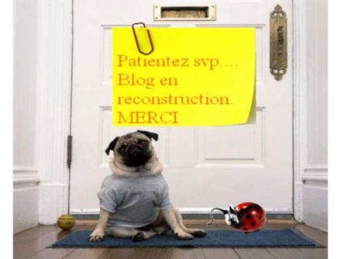 Blog en Travaux!! attention mettez un casque!! mdr
