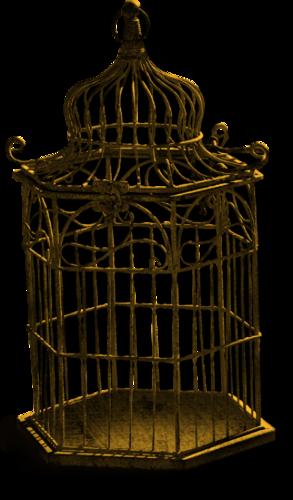 Cages à Oiseaux Série 1