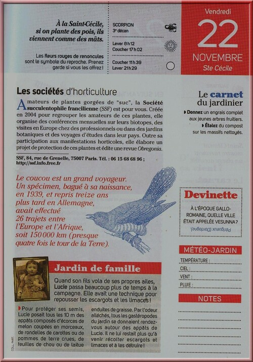♥ Animaux exotiques ♥
