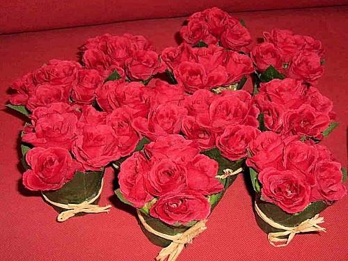 pot aux roses (1)