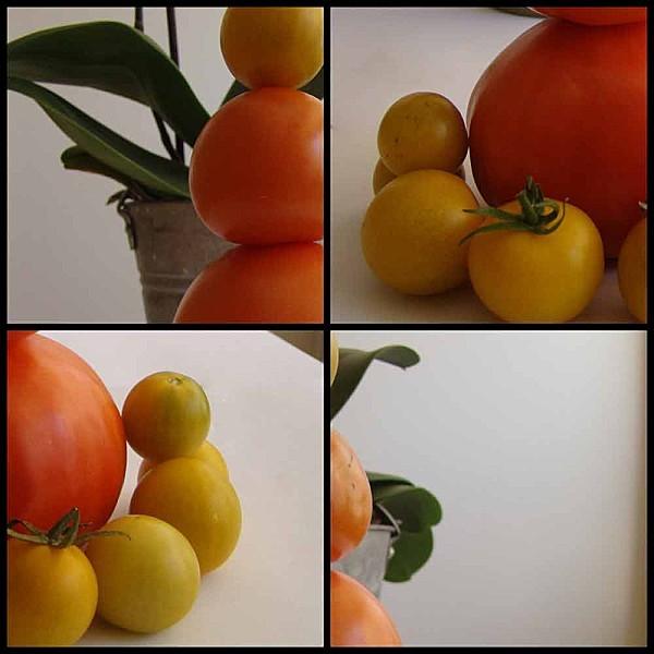 tomate-du-jardin.jpg