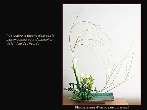 ikebana pps (15)
