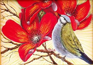 oiseau_01.jpg