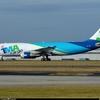 OD-TMA-TMA-Airbus-A300-600_PlanespottersNet_381775