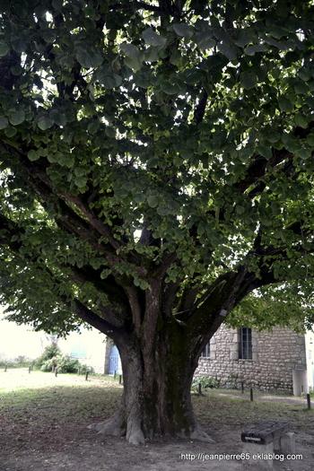 2015.08.15 Meschers, Talmont, La Tremblade (Charente Maritime) 2