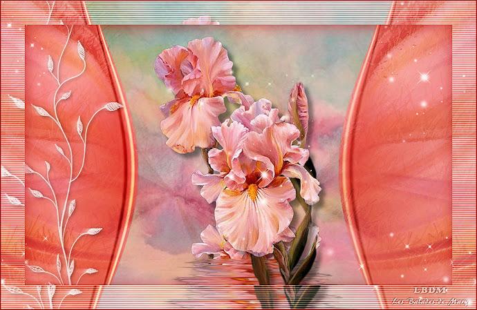 FL0056 - Tube fleurs