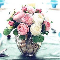 Ce ne sont que quelques fleurs.........